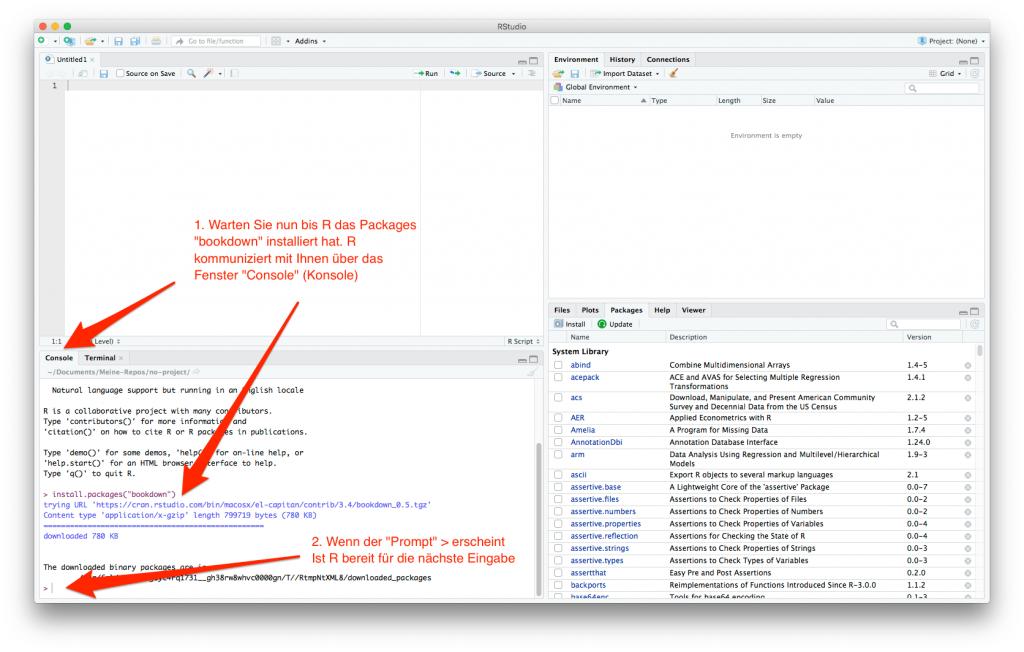 """screenshot: Rückmeldung von R, dass Paket """"bookdown"""" erfolgreich installiert wurde"""